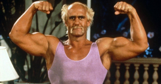 hulk-hogan-mr-nanny-tumblr